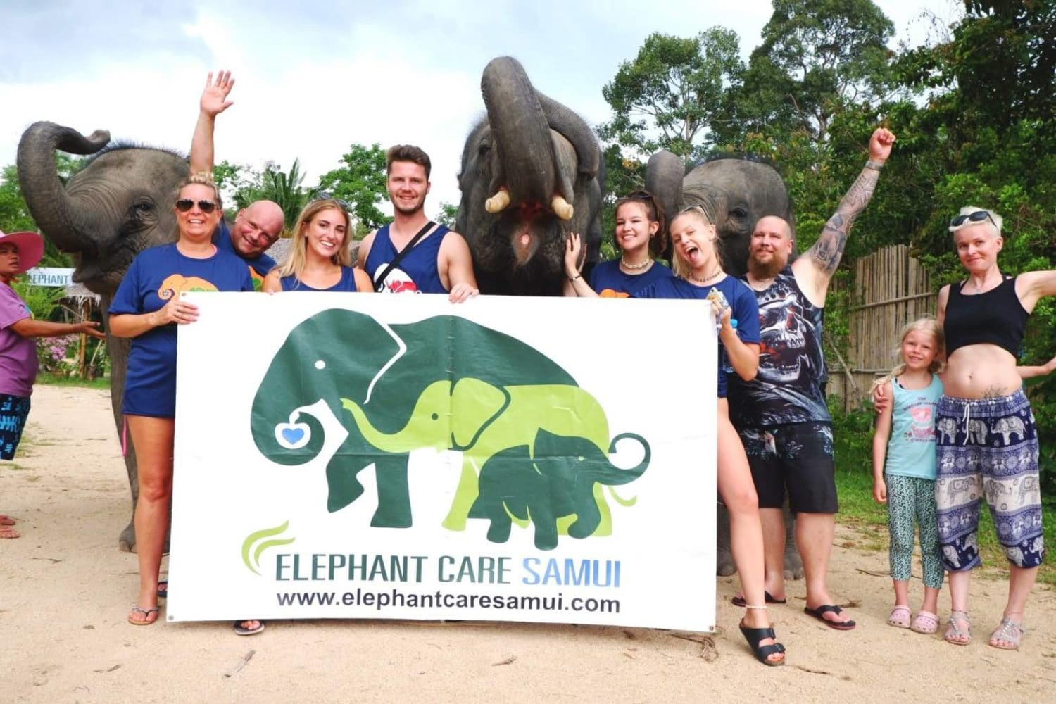 elephant-care-samui-01