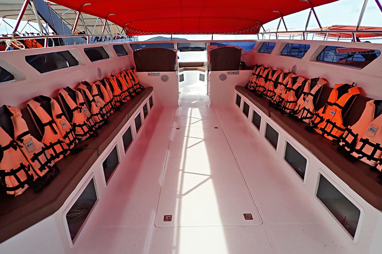 Rosa Delfine Tour mit dem Speedboot