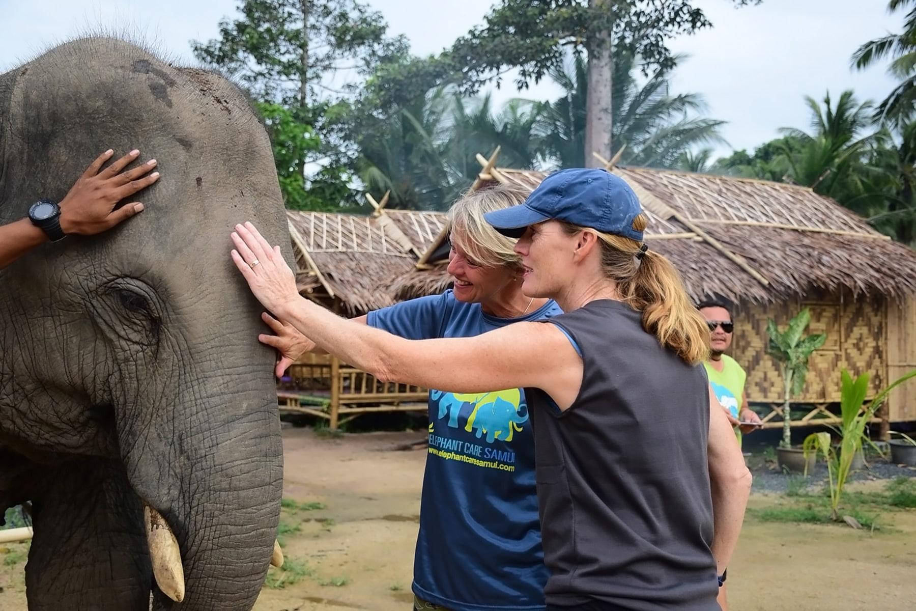 Samui Elephant Sanctuary baby Elefanten